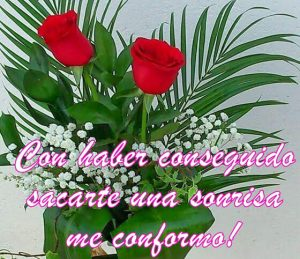 Frases Para Regalar Un Ramo De Rosas Flores Para Ti