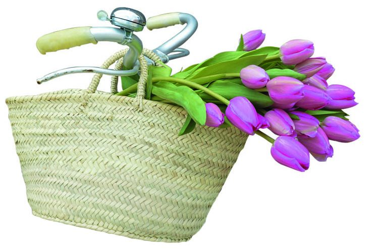 ¿Te gustan las flores?