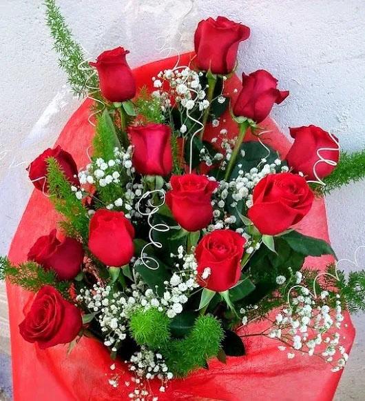 Cuánto cuesta una Docena de rosas rojas